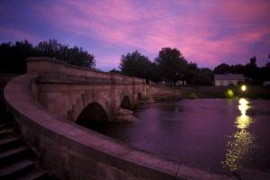 purple-bridge